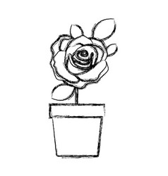 blurred silhouette flowered rose with leaves and vector image