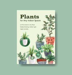 infomation about summer plant and house plants vector image