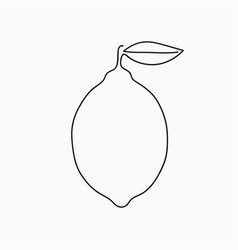lemon - one line drawing continuous line citrus vector image