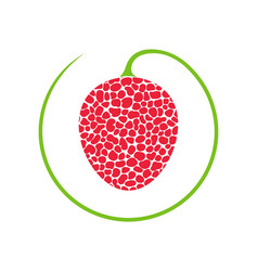 lychee vector image