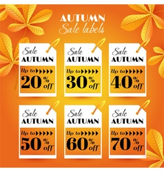 Set with autumn sale label vector image