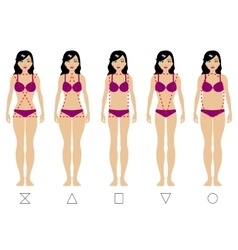 Five types of the female body vector image