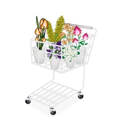 Flower and Orchid in A Shopping Cart vector image
