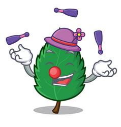 Juggling mint leaves mascot cartoon vector