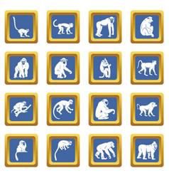 monkey types icons set blue vector image