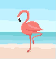 pixel art flamingo is standing on sand vector image