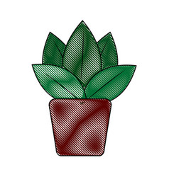 Potted plant flora green decoration interior vector