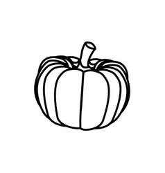 Pumpkin vegetable nutrition vitamin food health vector