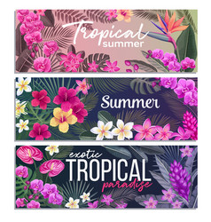 Tropical banners exotic flower and leaves vector