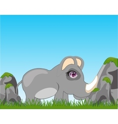 Rhinoceros on glade vector image