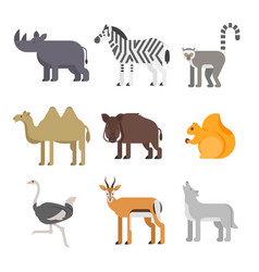 flat style set of animals rhinoceros wolf lemur vector image