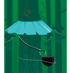 rubber tree vector image