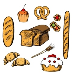 Bakery cakes and pastry objects vector