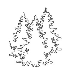 canadian spruce canada single icon in outline vector image
