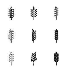 grains icon set simple style vector image