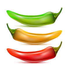 Hot chilli pepper set isolated vector