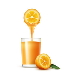 Kumquat juice vector