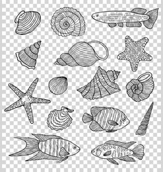 set of shells and fishes vector image