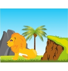 Wildlife lion in africa vector