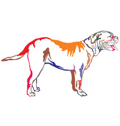 colorful decorative standing portrait of dog vector image