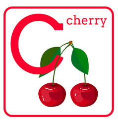 An alphabet with cute fruits letter c cherry vector