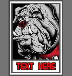 bulldog in frame vector image
