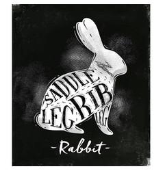 Rabbit cutting scheme chalk vector