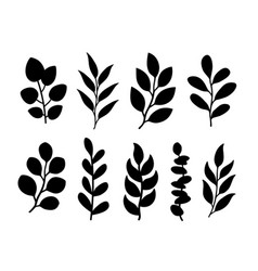 tree branches with leaves silhouettes botanical vector image