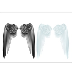 white and black wings vector image vector image