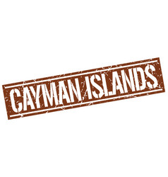 Cayman islands brown square stamp vector