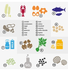 colorful set of typical food alergens for vector image