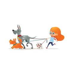 Little redhead girl walking three dog on leash vector
