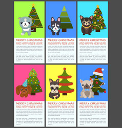 Merry christmas and happy new year pets and spruce vector