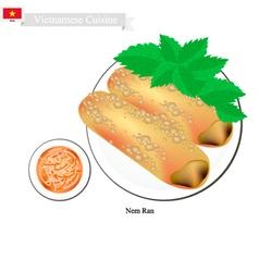Nem Ran or Vietnamese Crispy Spring Rolls vector image