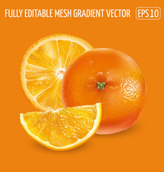 Whole orange and orange slices on an orange vector