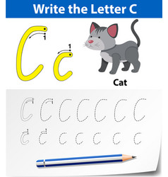 Write letter c english card vector