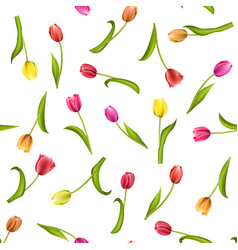 seamless pattern with flowers on a white vector image