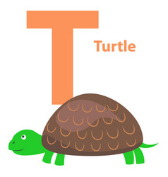 Alphabet for letter t with turtle vector