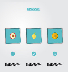 flat icons mango muskmelon litchi and other vector image
