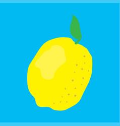fresh fruit lemon vector image