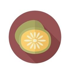Kiwi flat icon with long shadow vector image