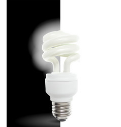 lighting powersave lamp on black and white vector image
