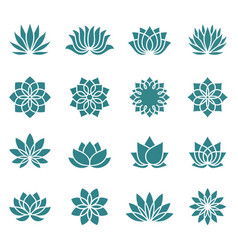 lotus flower icons vector image