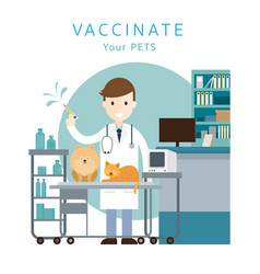 male veterinarian vaccinate pets vector image