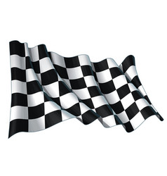 motor race waving flag vector image