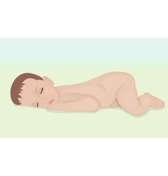 newborn baby lying vector image