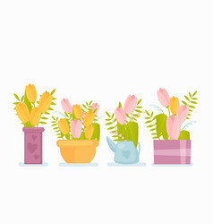 spring flowers in pots flat vector image