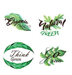 watercolor green leaves logo collection vector image