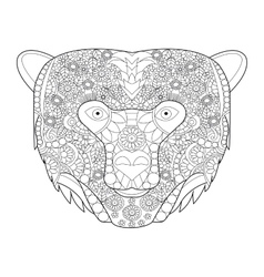 Bear head coloring for adults vector image vector image