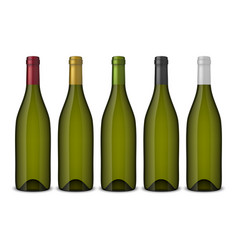 5 realistic green wine bottles without vector image